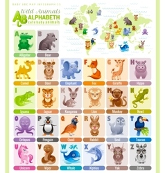 Alphabet wildlife infographics wild animal sea vector