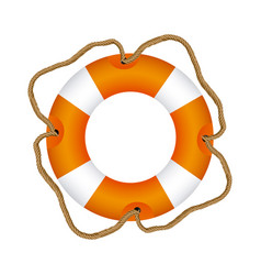 Color lifebuoy icon image vector