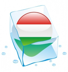 frozen button flag of hungary vector image vector image