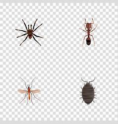 Realistic arachnid dor emmet and other vector