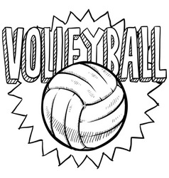 Volleyball vector image vector image
