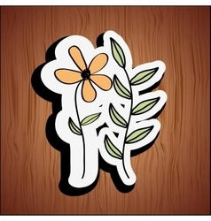 Floral decoration design vector