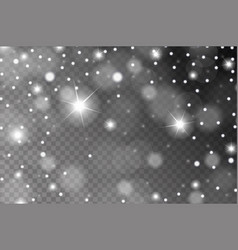 abstract shiny white snow sparkles and flares vector image