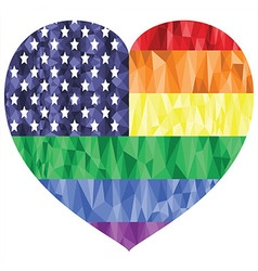 Poly art american flag with rainbow vector image