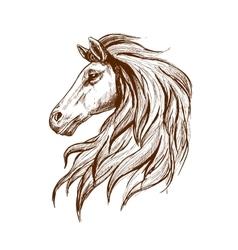 Sketch profile of arabian horse head vector