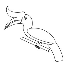 Outline hornbill bird vector