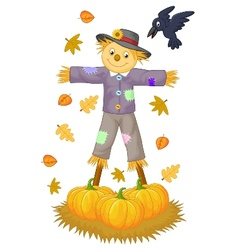 Scarecrow cartoon vector image vector image
