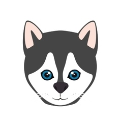 Siberian husky dog vector