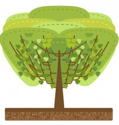 stylized tree illustration vector image vector image