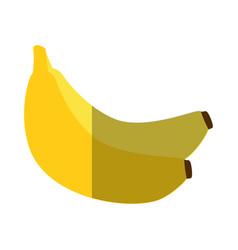 Bananas fruit icon vector