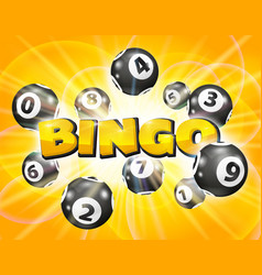 Lotto balls around the word bingo vector