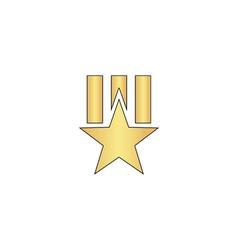 Order star computer symbol vector image