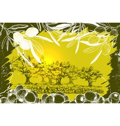 Olive harvest drawing vector