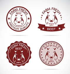 Cow label vector image