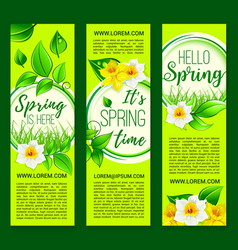 hello spring springtime flowers banners vector image