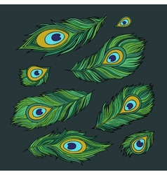 Peacock feathers abstract set vector