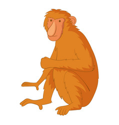 proboscis monkey icon cartoon style vector image vector image