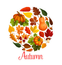 Fall season poster of autumn leaf and pumpkin vector