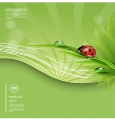 Green spring or summer abstract background vector