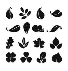 black monochrome symbols of spring leaf vector image