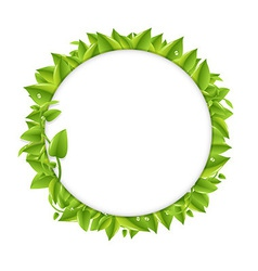 Circle With Green Leafs vector image