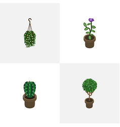 Isometric plant set of flower blossom tree and vector