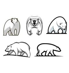 Set of cartoon polar bears vector image vector image