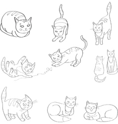 Set with the image of cats black and vector image