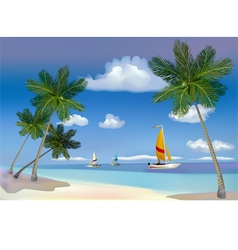 The sea yachts palm trees vector image