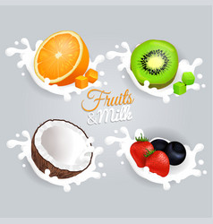 fruit and milk set concept on grey background vector image