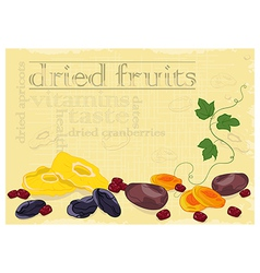 Dried fruits background vector