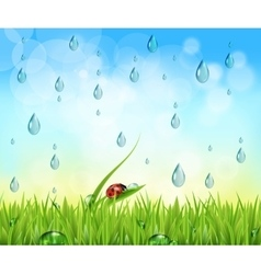 Nature background with raindrops vector