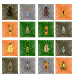 Assembly flat shading style bug scarab araneus vector