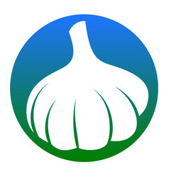 Garlic simple sign white icon in bluish vector