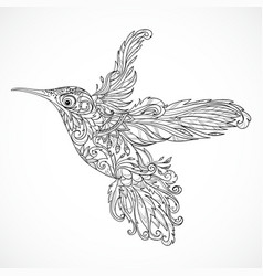 Hummingbird with floral ornament vector