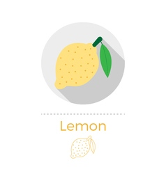 Lemon with a leaf vector image vector image