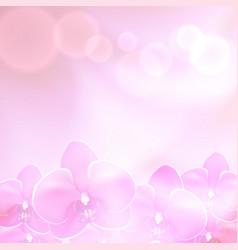 pink flower orchid background vector image