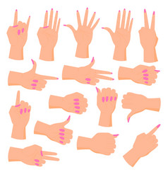 Set female hands vector