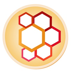 Hexagons in Shiny Circle Label vector image