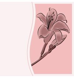 congratulation woman vector image vector image