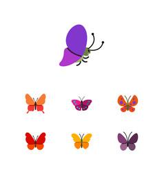 Flat moth set of danaus plexippus violet wing vector