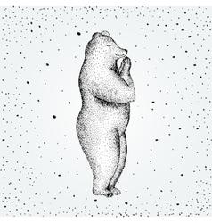 Fun a bear isolated on vector