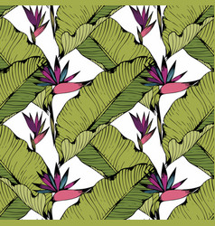 Seamless pattern with tropical leaves and flowers vector
