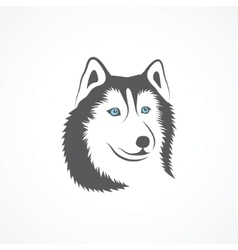 Siberian Husky vector image