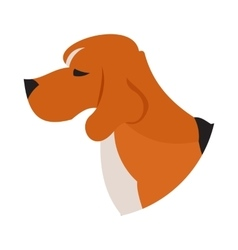 Pedigree dog head beagle vector
