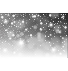 Abstract shiny white snow sparcles and flares vector