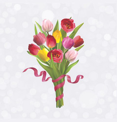bouguet of tulips vector image