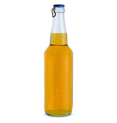 transparent bottle with a light beer vector image