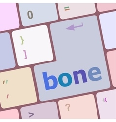 Bone button on computer pc keyboard key vector
