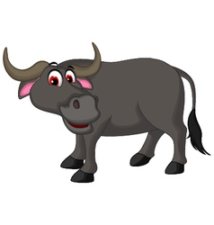 Cute buffalo cartoon posing for you design vector
